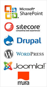 Wordpress Content Management System (CMS)